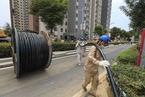 能源内参|河南郑州98%以上供电恢复;华能国际上半年净利降25.3%