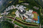 国风|深圳公办教育求均衡